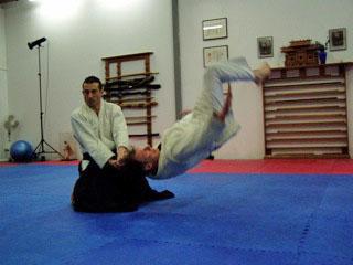 Pure aikido training