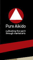 Pure Aikido - cultivating the spirit through the arts
